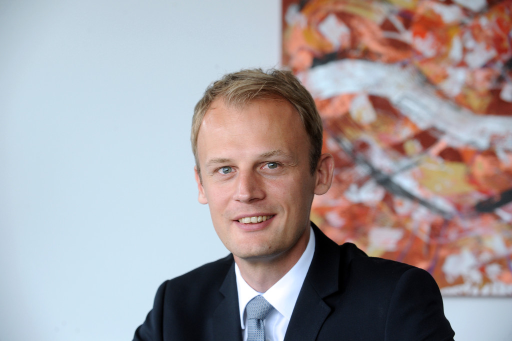 Patentanwalt, Rechtsanwalt, Ullrich & Naumann, DR. MEIKEL DIEPHOLZ